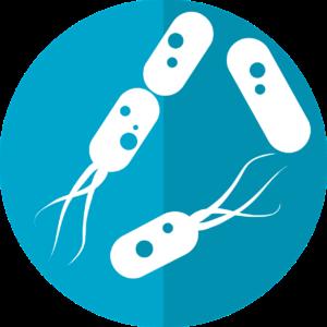 IHU Méditerranée Infection, les antibiotiques et les microbiotes